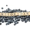 Antioxidants and Free Radicals Explained